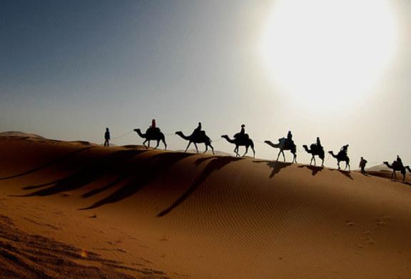 في التصوّف الوجوديّ لمحيي الدين بن عربيّ