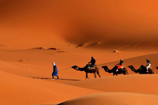 كيف نطق منصور بن عمّار بالحكمة؟