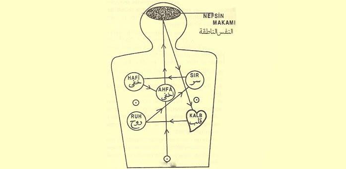 آراء الشيخ إسماعيل الأنقروي حول السَّماع